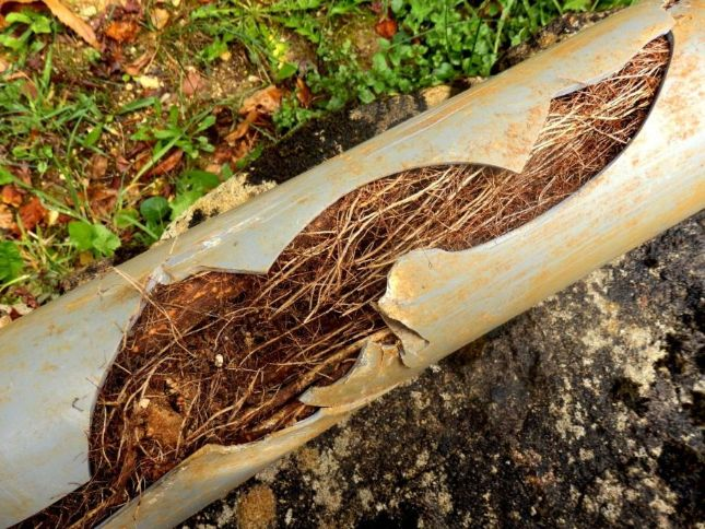 sewer jetting in Bloomington, IN